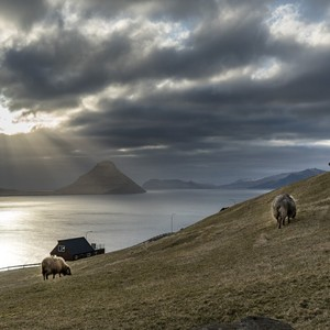 faroe-islands-18-300?v=1