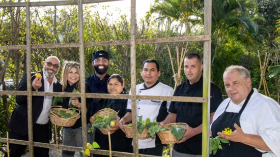 A Culinary Adventure That Gives Back