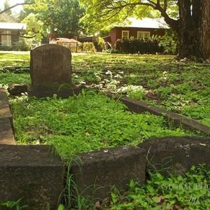 cemetery-3-300?v=1