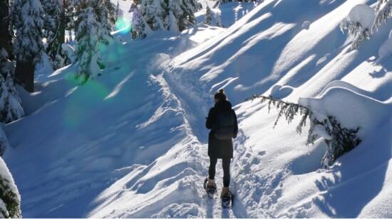 BEND SNOWSHOE