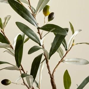 faux-plants-1-300?v=1