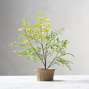 faux-plants-5-300?v=1