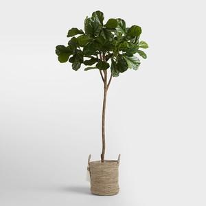 faux-plants-7-300?v=1