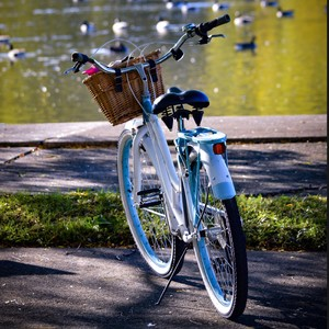 bike_traci_purvee_photography_spring_t20_p3bzx8-300?v=1