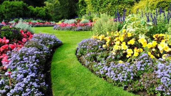 Building The Perfect Flower Bed