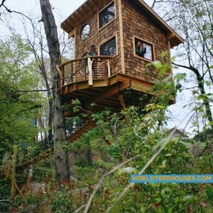201804-world-treehouse-asheville-downtown-adam-erin-treehosue-300?v=1