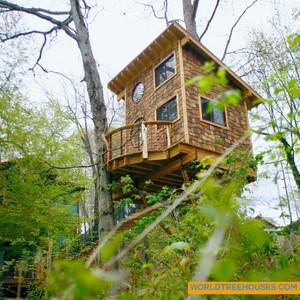 201804-world-treehouse-asheville-downtown-outside-treehouse-300?v=1