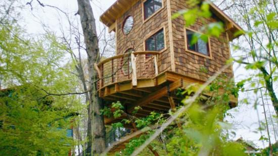 201804-world-treehouse-asheville-downtown-outside-treehouse-550?v=1