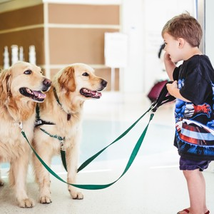 patient%20with%20therapy%20dogs-300?v=1