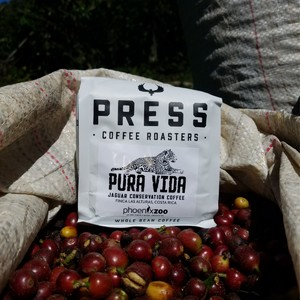 pura%20vida%20with%20pura%20vida%20coffee%20cherries-300?v=1