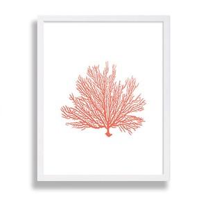 coralprint-300?v=1