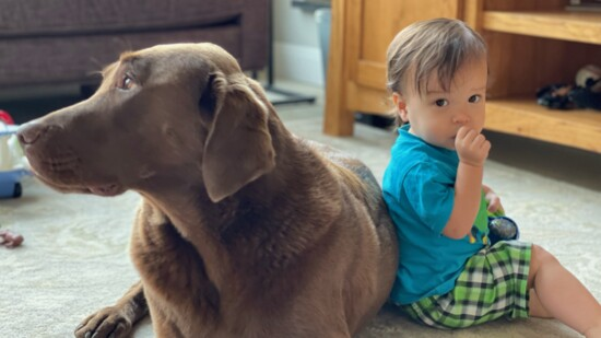 Our Kids and the Pets Who Love Them