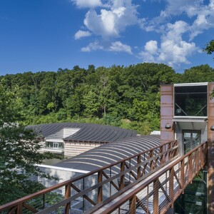 9-pedestrian-bridge-from-the-north-tower-to-the-north-forestcourtesy-of-crystal-bridges-museum-300?v=1