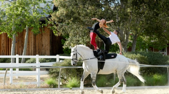 Discover Equestrian Vaulting for Recreation & Competition with F.A.C.E.