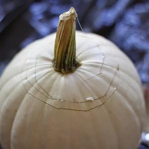 diy-fall-pumpkin-centerpieces-2-300?v=1
