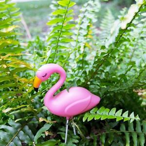 14-flamingo-plant-1-300?v=1