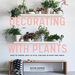 cover%20decorating%20with%20plants-300?v=3