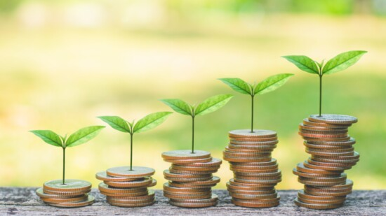 ESG Investing: Focus on Portfolio Growth, Stability, AND Sustainability