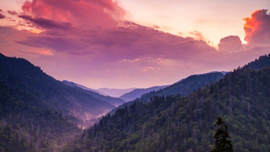 Explore the Quiet Side of the Great Smoky Mountains