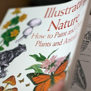 illustrating%20nature%20book-300?v=1