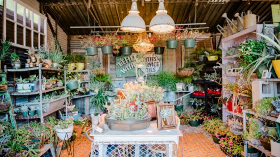 Farmhouse Style, Country Chic and Vintage Décor