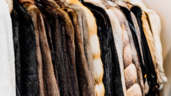 Gavrel Furs Continues to Thrive as a Premiere Furrier in Fort Worth