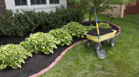 Get Your Landscape Summer-Ready