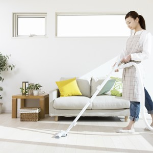 house-cleaning-300?v=1