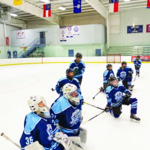 hockey_page2_left-300?v=1