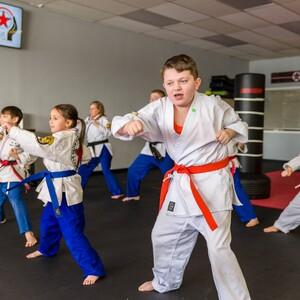 karate2-300?v=1