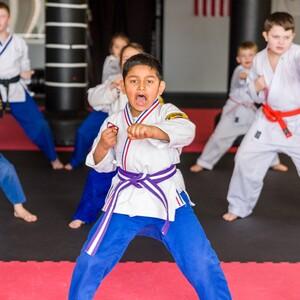 karate3-300?v=1