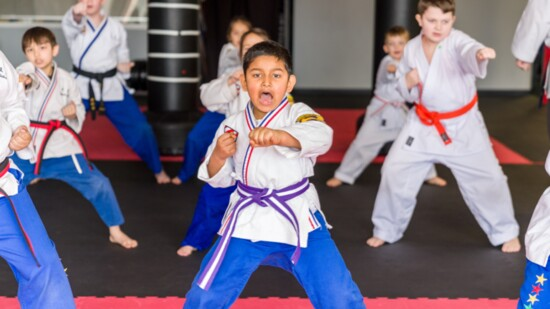 karate3-550?v=1