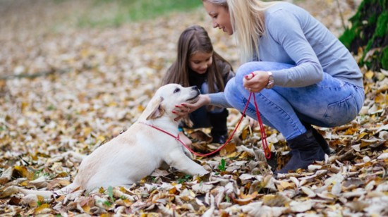 Pet Etiquette for Kids