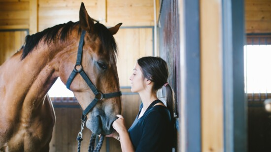 LIVING THE EQUESTRIAN LIFESTYLE