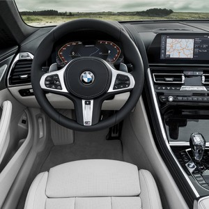 p90327639_highres_the-new-bmw-8-series-300?v=1