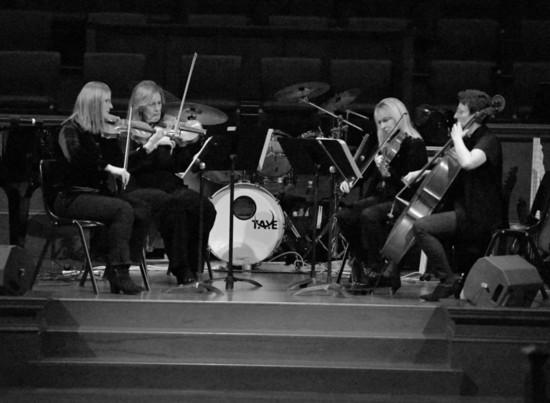 Meet the Orchestra: Cindy Beard, Violist
