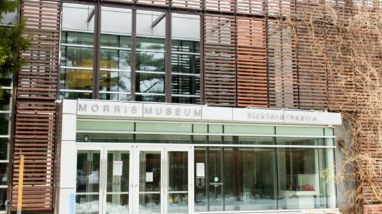 An Artistic Treasure, The Morris Museum