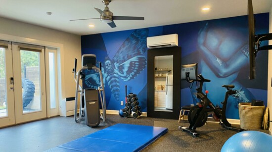 complete%20gym%20mural%20by%20brittany%20johnson-550?v=1