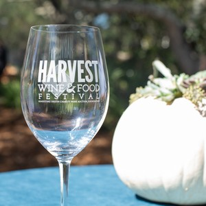 harvest%20wine%20%20food%20festival%20day%203%20web%20size-19-300?v=1