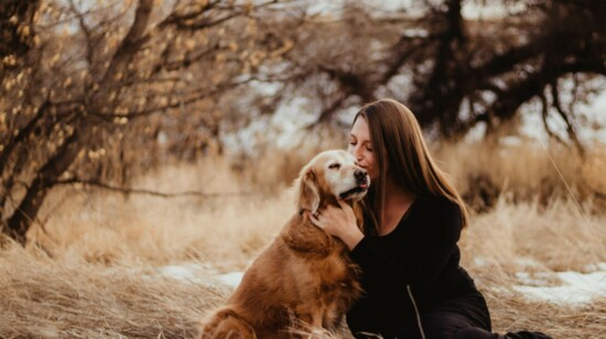 Photographing Our Furry Friends