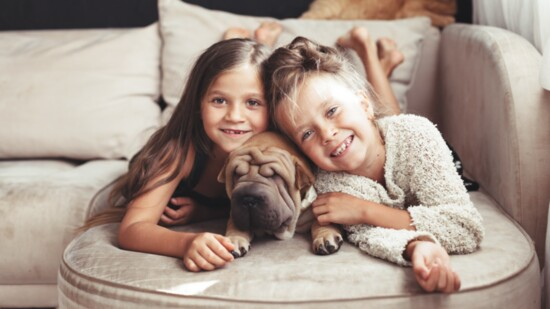 Practical Design Advice for Families with Kids and Pets