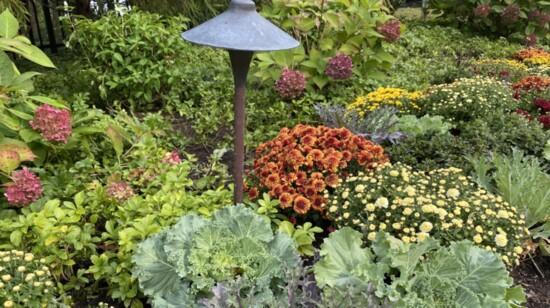 Reimagine Your Yard