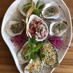 food%20%20oysters%201-300?v=1
