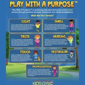 playwithpurposeimage-300?v=1