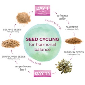 seed-cycling-300?v=1