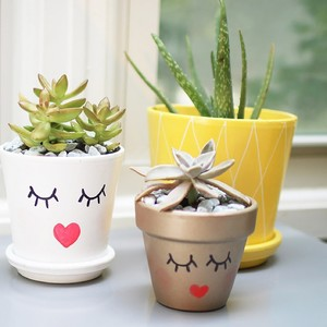 1-diy-plant-lady-pineapple-planters-header-300?v=1
