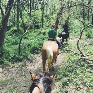 horseback-trail-ride-2-300?v=1