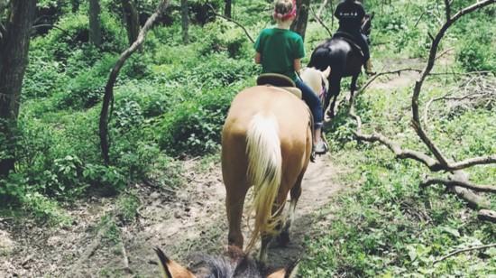 horseback-trail-ride-2-550?v=1