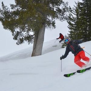 skiers-300?v=2
