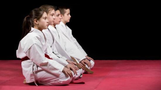Understanding Martial Arts Through a Holistic Approach